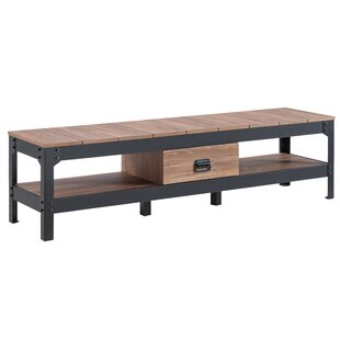 Ewing TV Stand For TVs Up To 58
