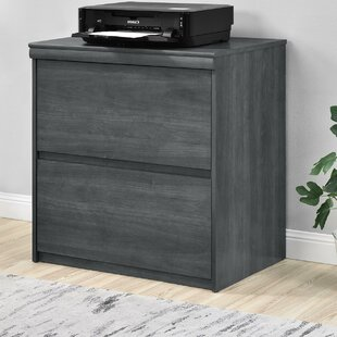 Wrought Studio Elkin 2-Drawer File Cabinet