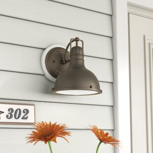 Dov 1-Light Outdoor Barn Light by Beachcrest Home