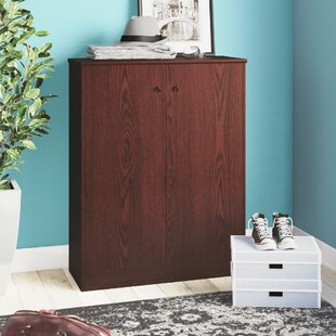 Searching for Stylish and Sophisticated Shoe Storage Cabinet with Double Door By Red Barrel Studio