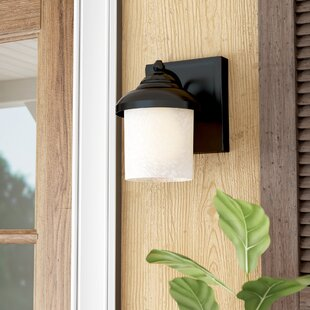 Bloomsbury Market Nicollet 1-Light Outdoor Sconce