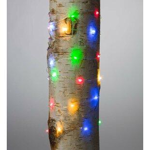 Plow & Hearth Firefly 40 Light Fairy String Lights (Set of 12)