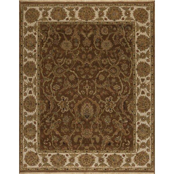 Samad Rugs Passions Oriental Hand Hooked Wool Brown Ivory Area Rug Wayfair