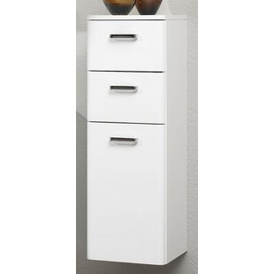 Piolo 30 X 91cm Wall Mounted Cabinet By Quickset