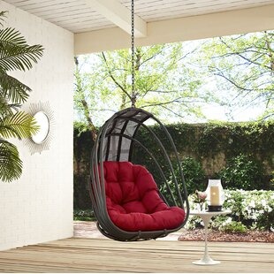 Whisk Swing Chair