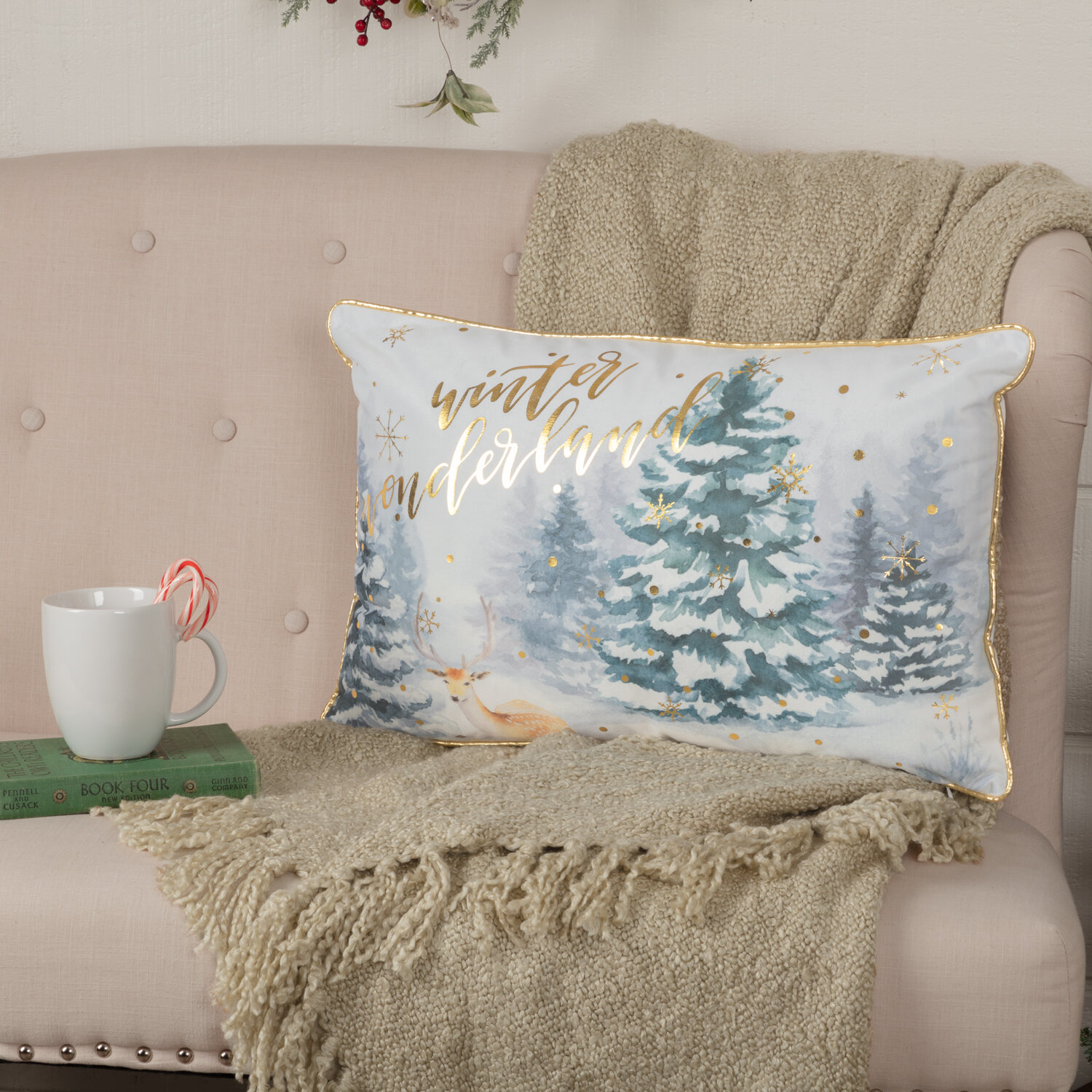 The Holiday Aisle Schroeders Cotton Throw Pillow Reviews Wayfair
