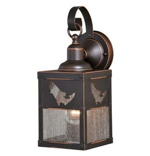 Lane 1-Light Outdoor Wall Lantern by Loon Peak Looking for