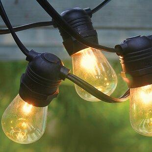 54 ft. 24-Light Standard String Light by The Paper Lantern Store