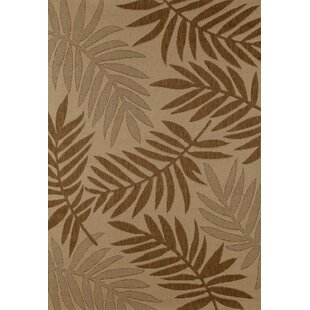 Top Reviews Coventry Brown Indoor/Outdoor Area Rug By Bay Isle Home
