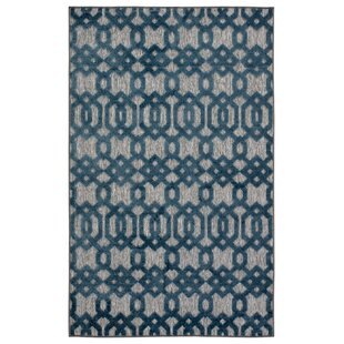 Nolita Trellis Gray/Blue Indoor/Outdoor Area Rug