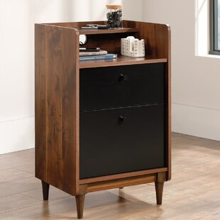 Galvez 2 Drawer Filing Cabinet By George Oliver