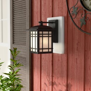 Price Check Woodard Rustic 1-Light Outdoor Wall Lantern in Imperial Bronze By Three Posts