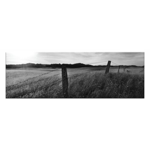 Golden Grass by Andrew Brown Photographic Print on Canvas in Black