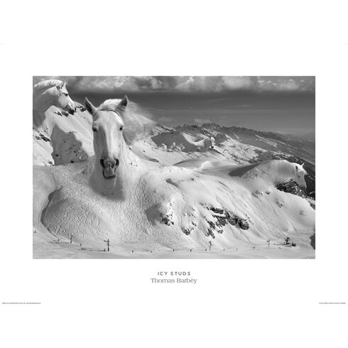 Icy Studs by Thomas Barbey Graphic Art