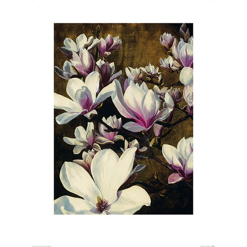 Magnolia Silk by Sarah Caswell Art Print