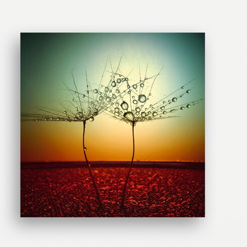 Fire and Water by Dimitar Lazarov-Dim Photographic Print on Glass