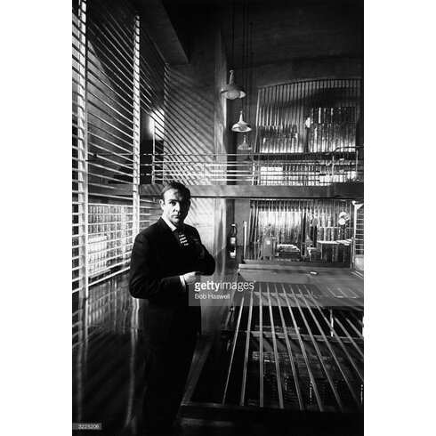 Goldfinger by Bob Haswell Photographic Print