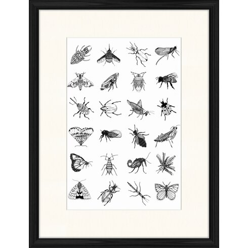 Bugs Framed Graphic Art
