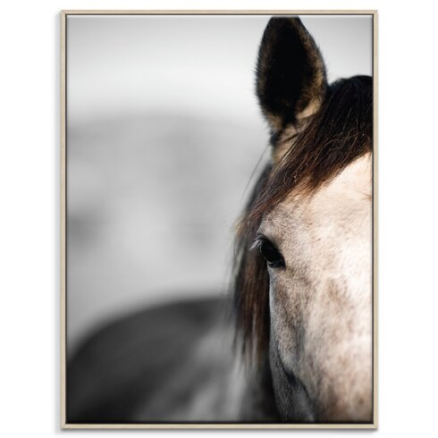 'Horse 3' by Joe Vittorio Framed Photographic Print on Wrapped Canvas