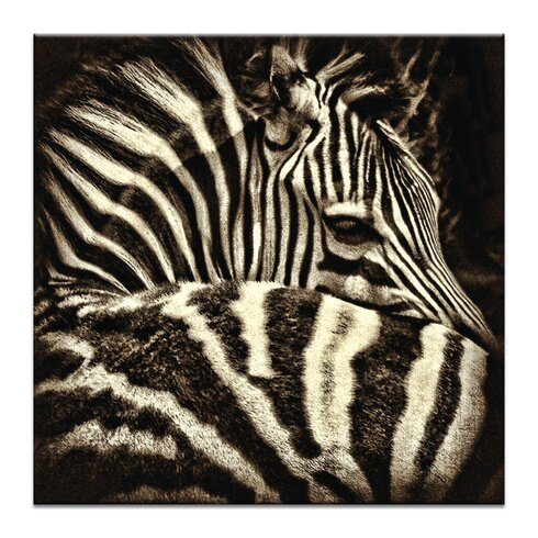 'Comfort' by Andrew Paranavitana Photographic Print on Wrapped Canvas