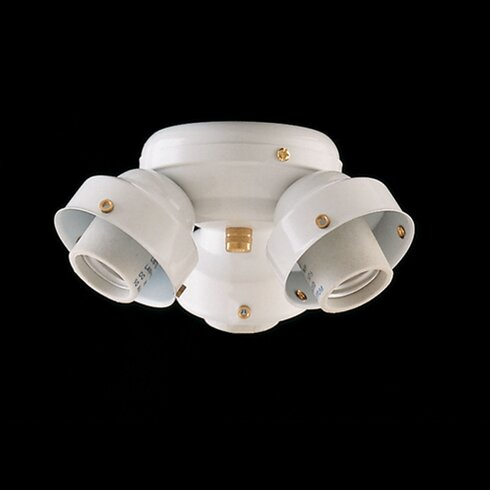 Turtle 3-Light Branched Ceiling Fan Light Kit