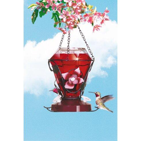 Blossom Edition Hummingbird Feeder
