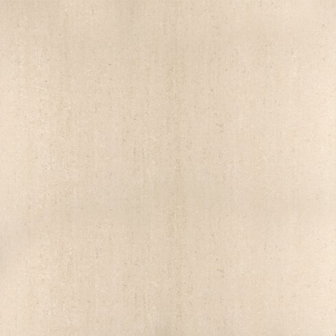 "Pietre Del Nord 24"" x 24"" Porcelain Field Tile in Matte Alaska"