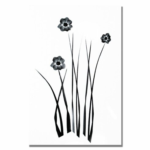 Trademark Fine Art White And Black Bunch By Kathie McCurdy Painting Print On Canvas KM0234 C TMAR7184 additionally 333417 additionally Auto Muursticker Kinderkamer Ciao Wall Sticker Kids Kidsroom By April And May further P 11831 Mercer Chandelier besides DCOR Design Mixit Sputnik 12 Light Cluster Pendant VSR1324. on living room decor inspiration