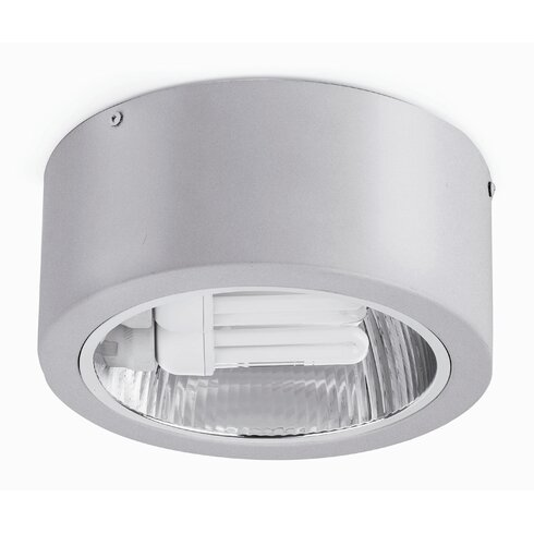 Nidia 2 Light Ceiling Spotlight