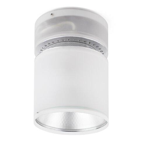 Lichi 1 Light Ceiling Spotlight