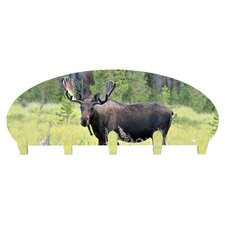 Moose 5 Hook Coat Rack by Next Innovations