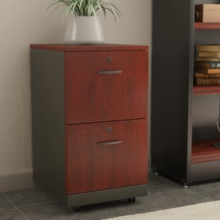 Red Barrel Studio Castalia 2 Drawer Filin..
