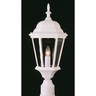 Kenwood 1-Light Lantern Head by Lark Manor
