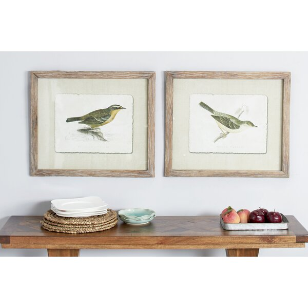 Extra Large Vintage Style Warbler And Accentor Bird Illustrations 2 Piece Picture Frame Painting Print Set On Paper Birch Lane