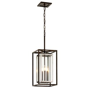 Darby Home Co Samar 3-Light Outdoor Hanging Lantern