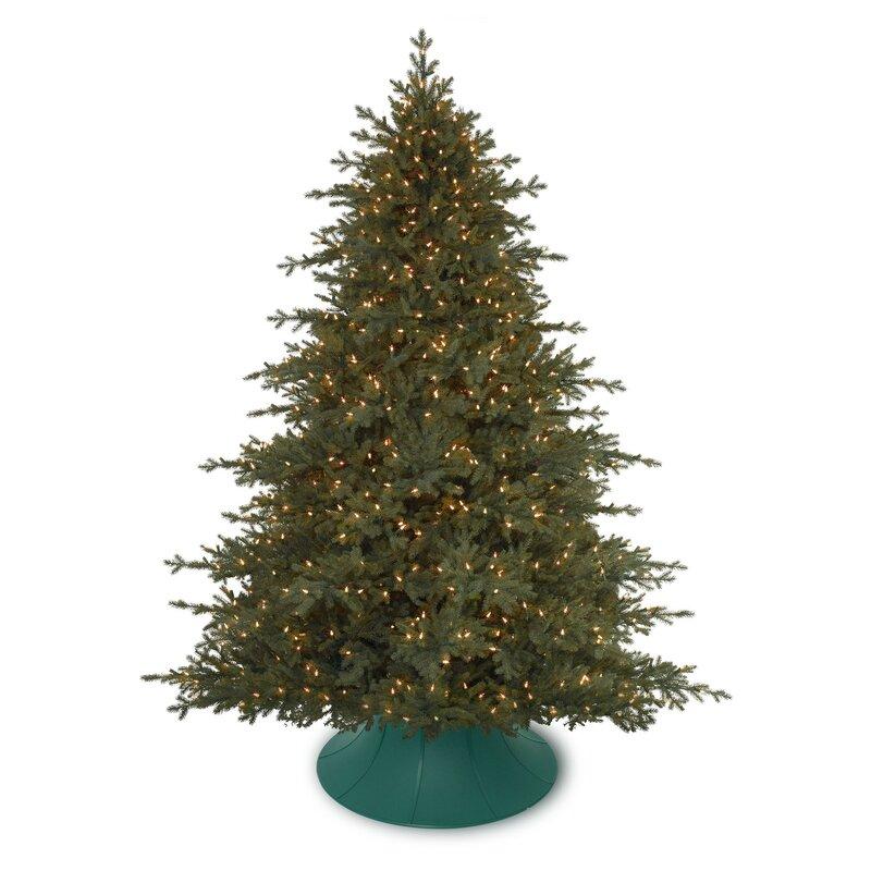 Algreen Christmas Tree Angel Live Tree Stand Wayfair Ca