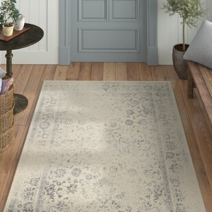 Top Reviews Aiken Ivory/Silver Area Rug by Laurel Foundry Modern Farmhouse