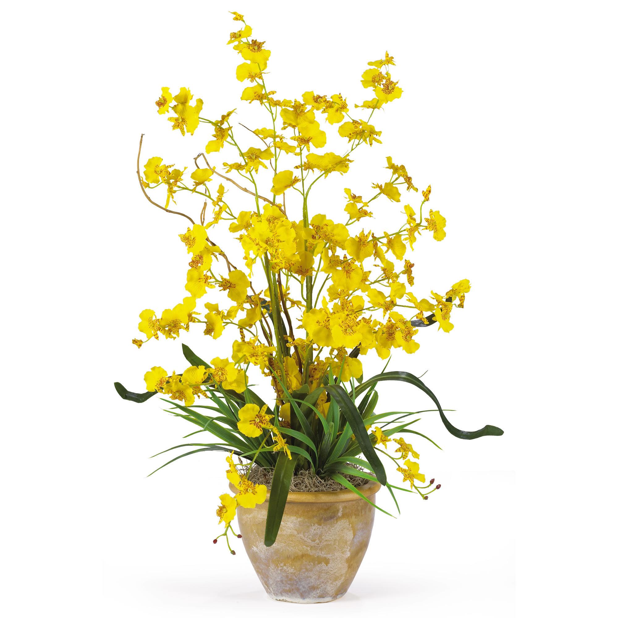Orchid Ikebana