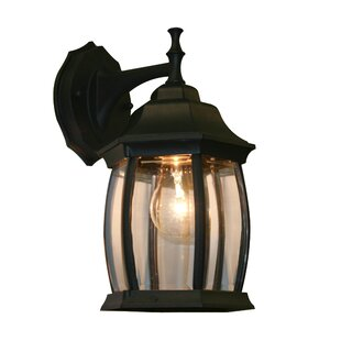 Digennaro 1-Light Outdoor Wall Lantern By Charlton Home Outdoor Lighting