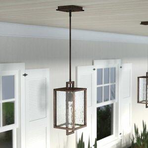 borkowski 1light outdoor hanging lantern