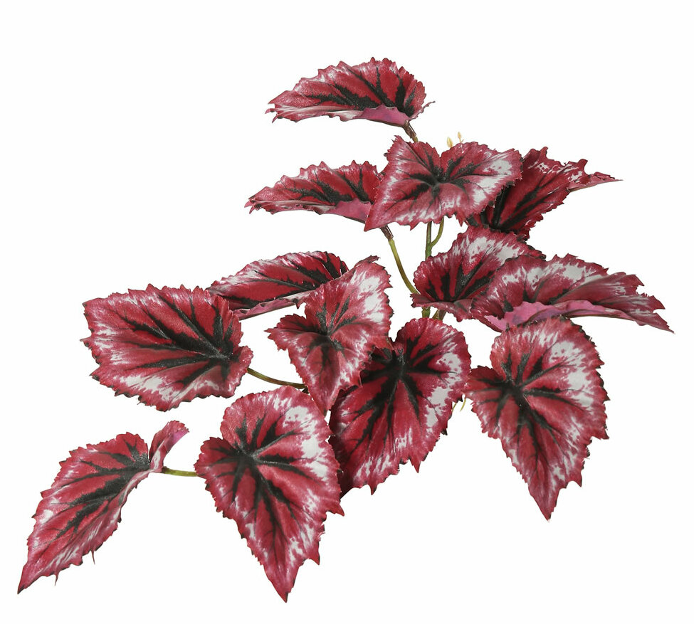 Bloomsbury Market Artificial Red Foliage Begonia Plant Reviews