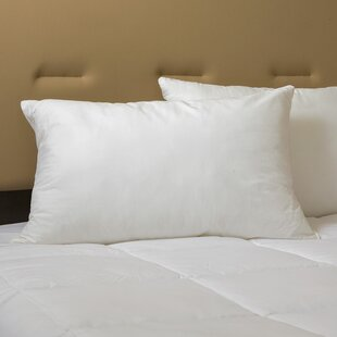 Hypoallergenic Down Alternative Pillow by Alwyn Home Design