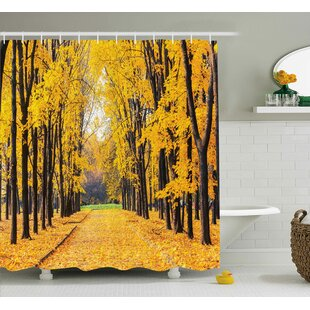 Vandemere Nature Autumn Fall Trees Falls Dried Leaves Scenery on Road Path Photo Artwork Single Shower Curtain