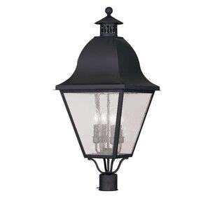 Goodhue Outdoor 4-Light Lantern Head by Alcott Hill