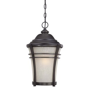 Best Reviews Petersen 1-Light Hanging Lantern By World Menagerie