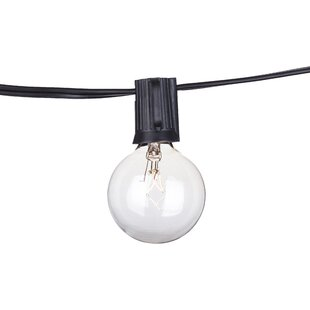 Aspen Brands 14-Light Globe String Lights