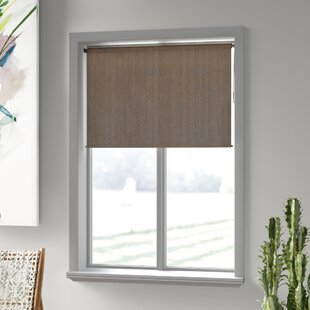 Roller Shades Blinds Windows Free Shipping Over 35 Wayfair