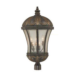 Lisk 6-Light Lantern Head by Astoria Grand