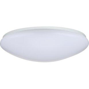 Ebern Designs Dahlstrom 1-Light LED Outdoor Flush Mount