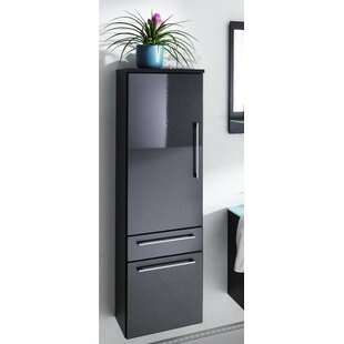 Beckwith 40 X 134.5cm Wall Mounted Cabinet By Wade Logan